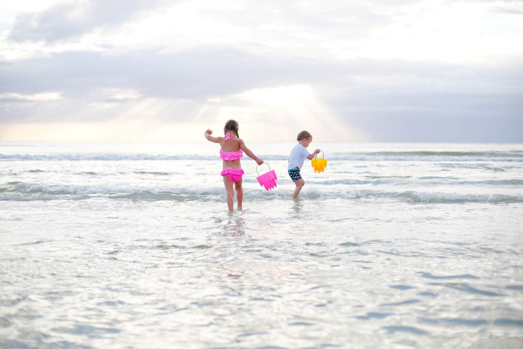 About That Swan: Marco Island Staycation