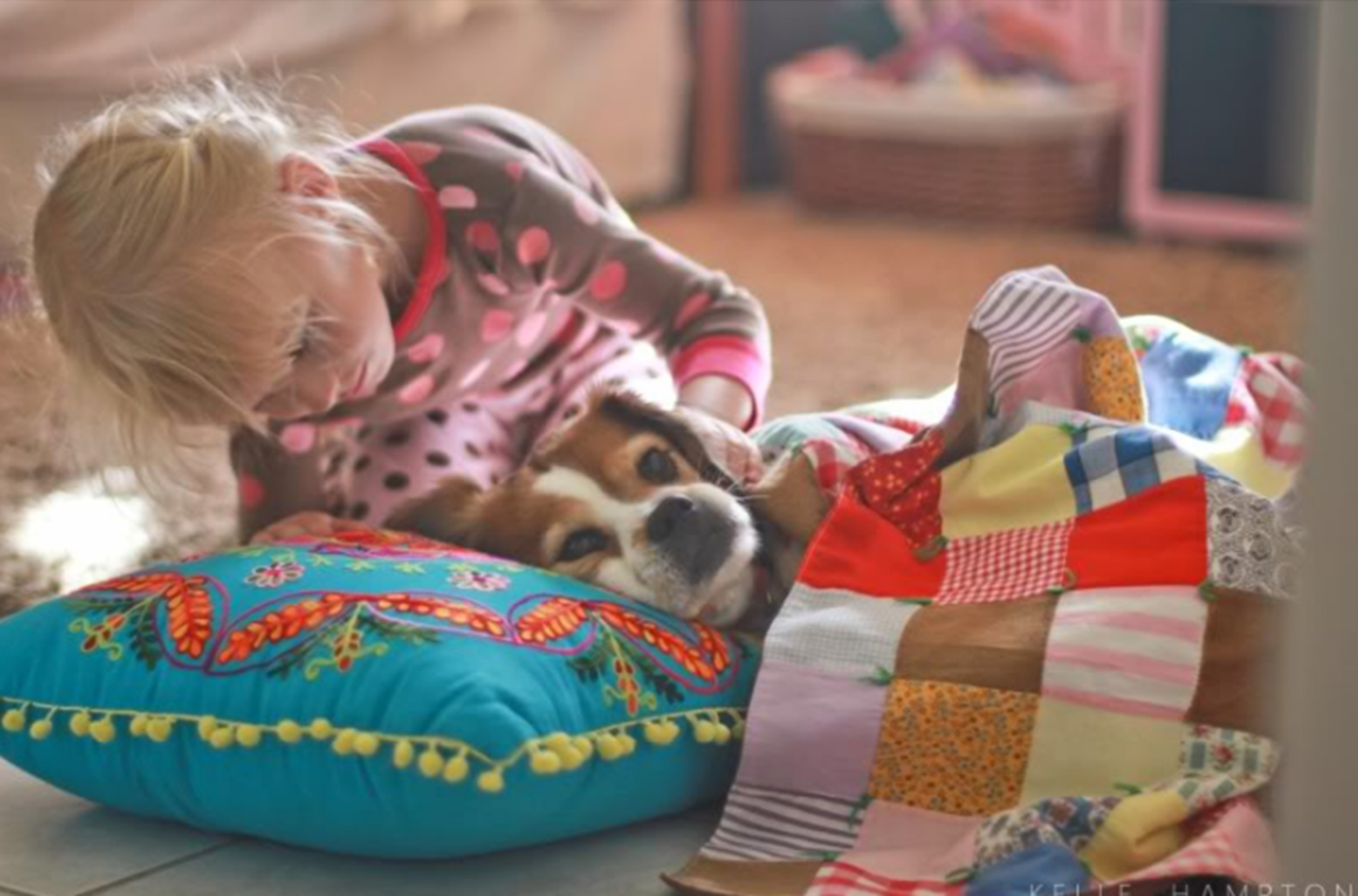 Watch Grappling with Grief: Losing a Beloved Pet video