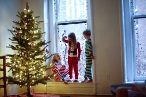 Deja Vu: Christmas in Chicago